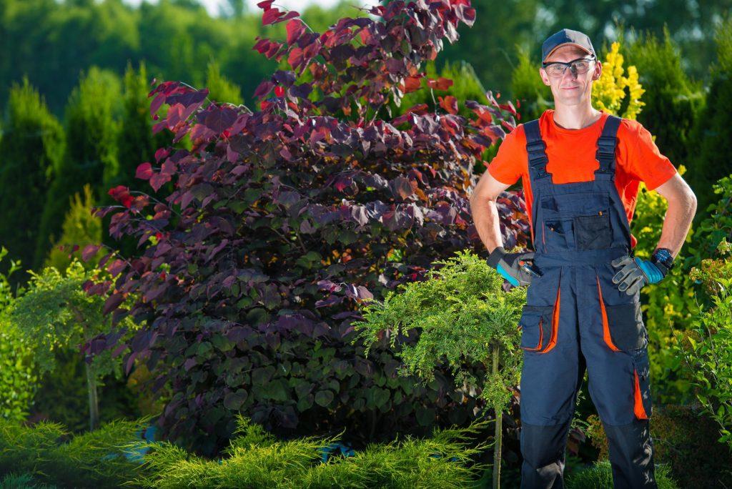man on the garden